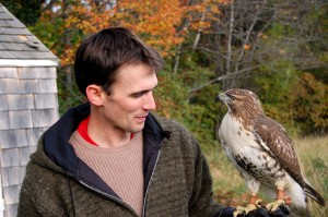 Here in Dublin, naturalist, writer/poet, falconer and Dublin School teacher, Henry Walters, has trained a Red-Tailed Hawk.