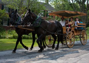 Filler - Living History Horse-and-Carriage