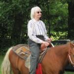 DD-Horse