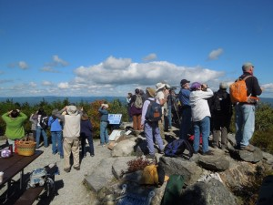 A crowd of observers gathers to watch migrating Broad-Winged Hawks. Photo by Phil Brown