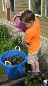 Hunter Hill, 5, of Peterborough, waters the cucumber seedlings outside our raised-bed gardens at DCP. Photo by Cathy Carabello