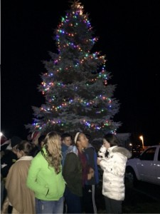 Town Tree 2015